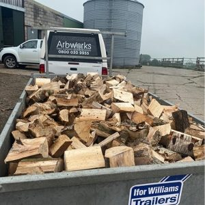 firewood by the trailer load