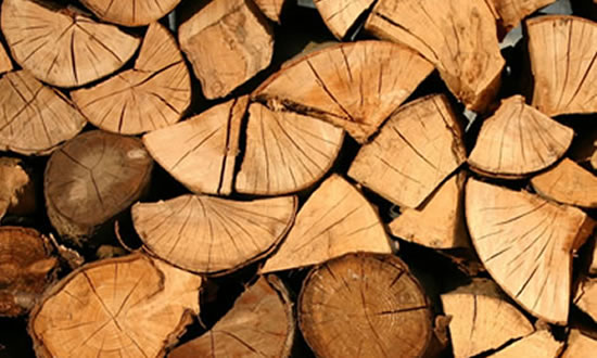 firewood neatly stacked small